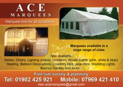 Ace marquees3